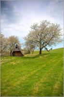 Spring house by mjagiellicz