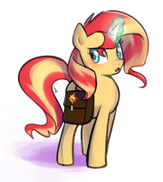 Sunset with her bag by Haden-2375
