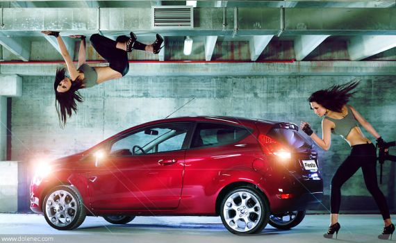 Ford Fiesta campain by Dolenec