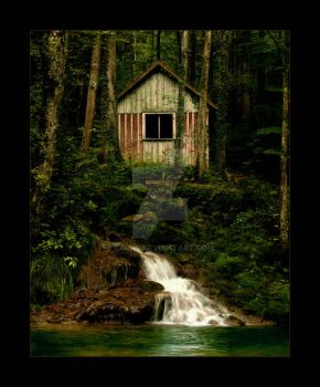 deep in the woods by barns