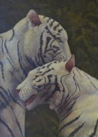 White Tigers - Tenderness by CalciteMink1610