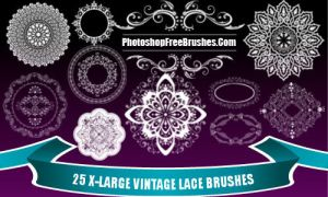 Vintage Lace PS Brushes by fiftyfivepixels