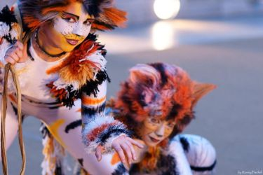 Cats Cosplay by lokinst
