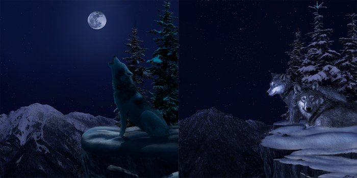 Winter Night Wolves paintjob - the original by JaydoDre