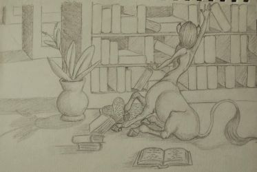 Day at the Library by TijonWolfsMajestys