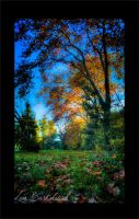 Parque Pereyra HDR by Leabor