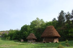 Traditional thatched houses in Romanian countrysid by antonnicuadrian