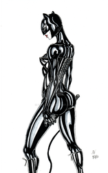 Catwoman by Scuter