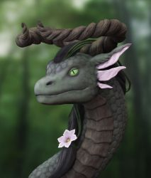 Naturedragon by Schlossbauer