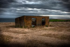 Shed in Field by jgalvin