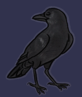 American Crow by Minneral