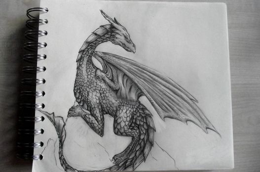 Another Dragon by Wildlioness3