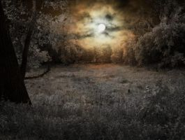 Premade Background 2 by Kreatiques-x