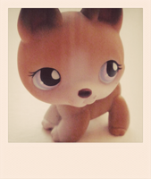 Littlest Pet Shop: Dog by Princess-Artie