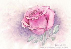 1241 Rose Symphony by YourFavoriteRussian