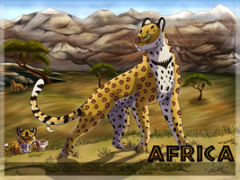 AFRICA **CONTEST** by BLACK-Tango