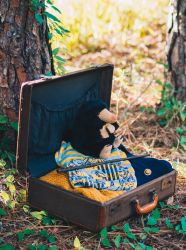 A Magizoologist's Suitcase by Queen-Kitty