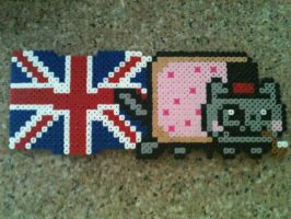 British Nyan cat by Birdseednerd