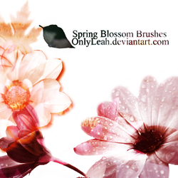 spring brushes by OnlyLeah