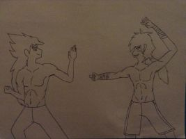 Kota and Alffy sparring session (art trade) by Lucasfan375