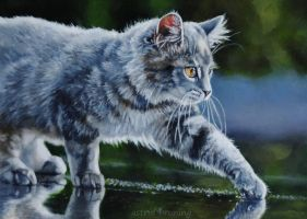 aah-it's been raining!  - PAINTING (updated) by AstridBruning