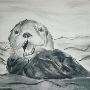 Otter by snowflake12298