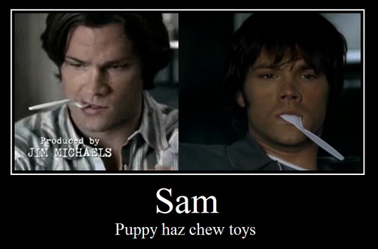 Sam Motivational Poster by Sharonxxx56