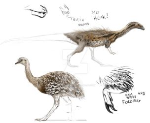 Practice: Chilesaurus and Darwin's Rhea. by Lucas-Attwell