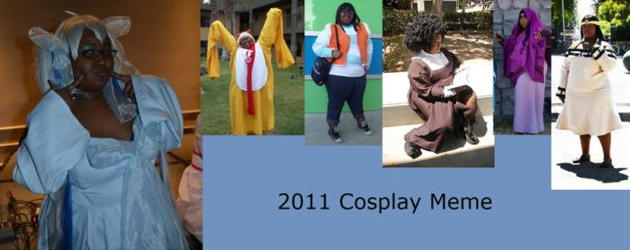 2011 Cosplay Meme by SakuraMikage