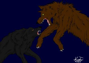 wolf fight by KTechnicolour