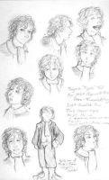 Pippin Character Studies by xanykaos