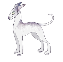 Sighthound Adoptable || OPEN price lowered by rainwolfeh