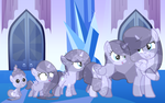 (MLP)   Size Chart - Crystal Moonheart by CrystalSweetsYT