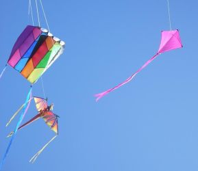 OMG kites...  blue sky in Oct. by skyrere