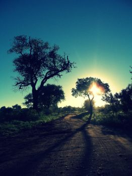 Bending the Shadows by AfricanLove