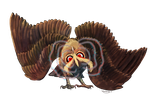 Noctowl used Confusion! by DragonchildX
