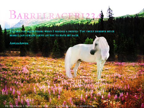 For Barrelracer4321 by prom-song