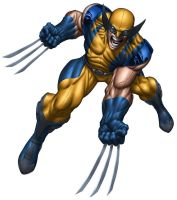 Wolverine by edtadeo
