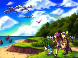 Pokemon - Route 104