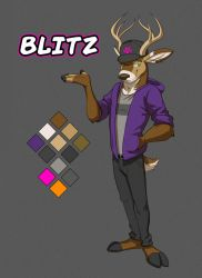 Commission: Blitz's Reference Sheet by Temiree
