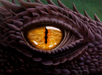 Dragon Eye by MidgarZolom