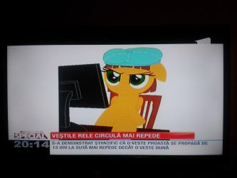Pony OC on national news (2015, not really recent) by addax12345