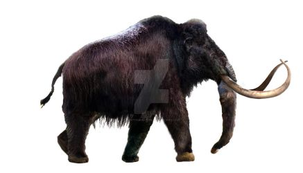 Woolly Mammoth - WIP part 4 by Dantheman9758