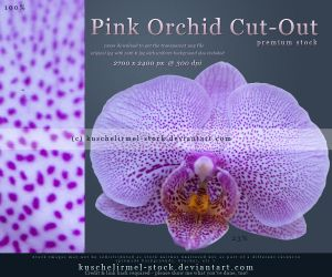 Pink Orchid Cut Out by kuschelirmel-stock