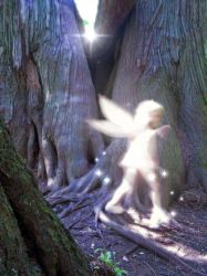 Forest Sprite by ShyloLove