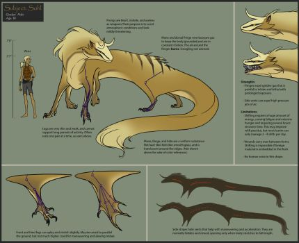 Icarim Reference by Azho
