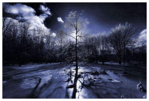Frozen Shadows by aquapell