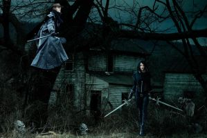 Van Helsing_Another history_ by Mvicen