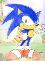 Sonic the Hedgehog watercolor by SurfTiki