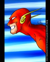 The Flash by lervold